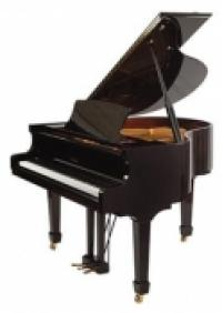 NEW Irmler Baby Grand Piano